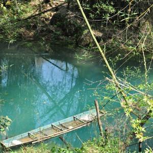 平塘游记图文-贵州游记之平塘甲茶景区