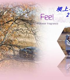 [乌兰布统游记图片] 永远的秋色---坝上行