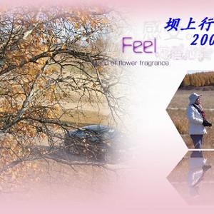 乌兰布统游记图文-永远的秋色---坝上行