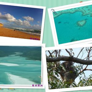 汉密尔顿岛游记图文-那些年,在路上之追寻春天的脚步(2012国庆墨尔本+汉密尔顿岛+大洋路)