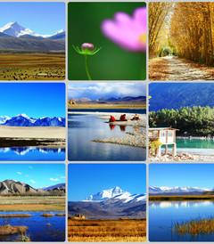 [拉萨游记图片] 2010长驾之西藏篇