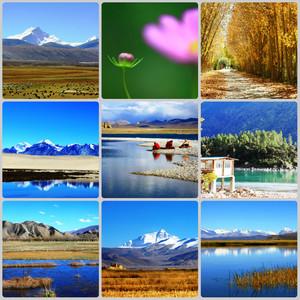 聂拉木游记图文-2010长驾之西藏篇