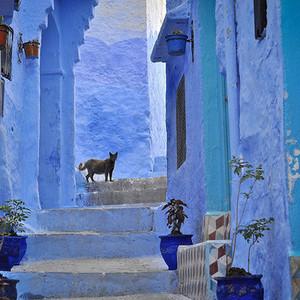 摩洛哥游记图文-【旅途】打翻了天空,摩洛哥绝美小镇舍夫沙万,童话一样的地方