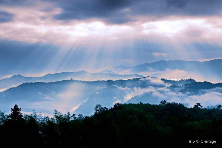Yangling National Forest Park1