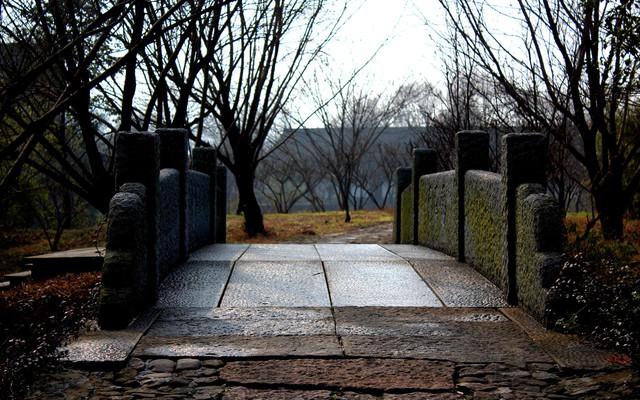 冬日的寂静——西溪湿地;不时撞见历史的城市——绍兴