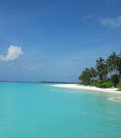 [伊露岛游记图片] 伊露岛--梦一般的旅程