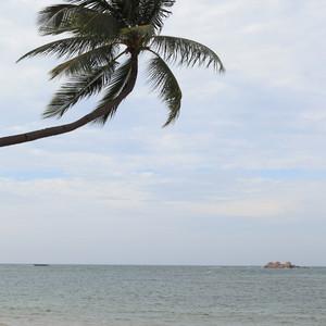 民丹岛游记图文-【冰沁于心】带上老婆去印尼:难忘民丹岛的散漫时光