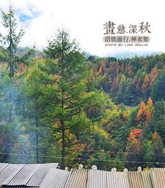 [神农架游记图片] 【加游站】【野人的呼唤】来自秋天,如诗如画神农架