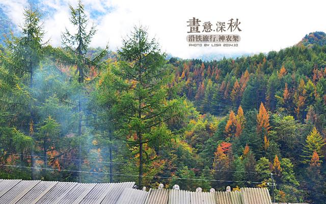 【加游站】【野人的呼唤】来自秋天,如诗如画神农架