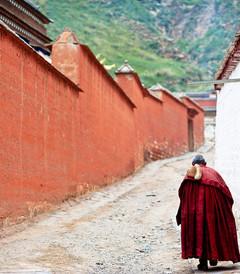 [夏河游记图片] 我的旅行.甘之南