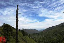 神秘原始森林,神农架全景三日游