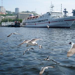 海参崴游记图文-俄罗斯