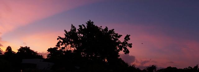 感受天堂~不一样的毛里求斯雨季蜜月行~