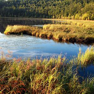 沈阳游记图文-一路向北----呼伦贝尔大草原夏日畅快淋漓的撒欢行