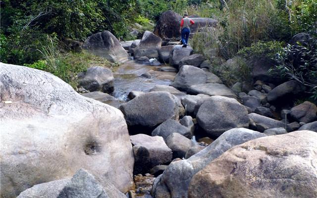 惠州深度游之——惠东古田自然保护区采蜂蜜、溯溪探幽