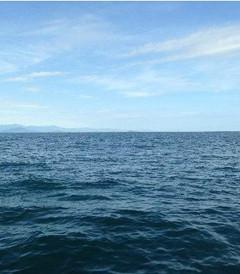 [沙巴游记图片] 沙巴亚庇深度15天游(美人鱼岛,红树林,香格里拉,迪加,双岛)