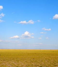 [内罗毕游记图片] 我的肯尼亚探险之旅1(安博塞利+阿布戴尔+肯尼亚山度假村)