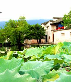 [扬州游记图片] 我们的旅途之南京、扬州、镇江、宏村、黄山