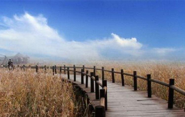 Fenghuang Island Eco-tourism Zone1