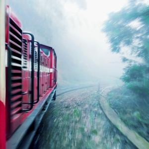 嘉义市游记图文-【加游站】【台湾】漫步云端:茶园里的森林城堡