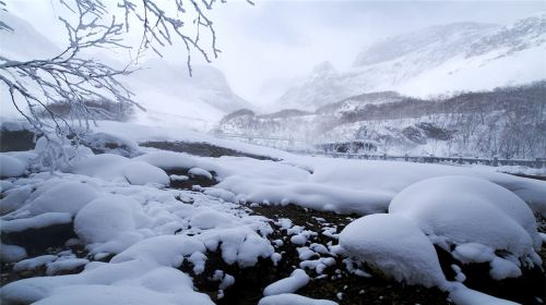 North Slope Of Changbai Mountain