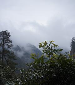 [井冈山游记图片] 2014.11.秋雨缠绕中的井冈山