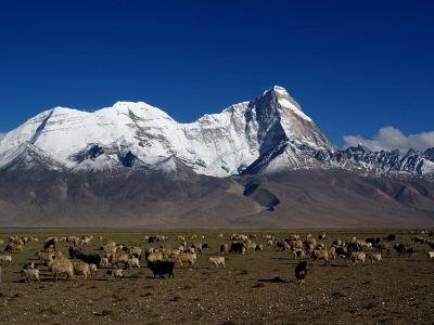卓木拉日峰