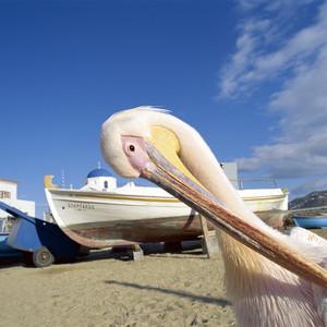 梅黛奥拉游记图文-把爱情留在爱琴海---蓝白天堂希腊