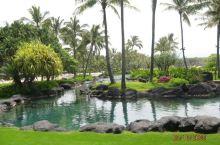 君悦酒店见闻--夏威夷可爱岛 来到可爱岛之后每天都安排的满满当当,不是东奔就是西跑,一直没有来得及真
