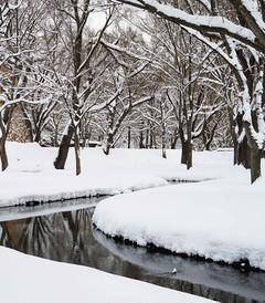 [北海道游记图片] 孤独と狂欢の旅——北海道