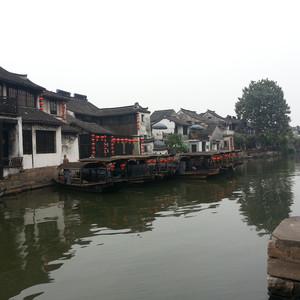 龙井游记图文-西塘-乌镇-杭州5日游