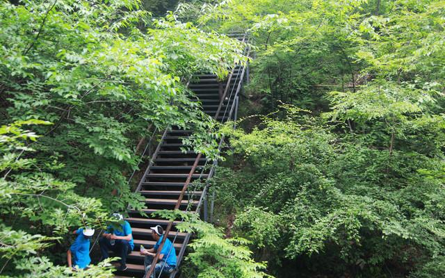 百里峡栈道,百里峡台阶