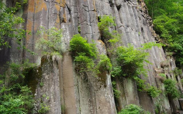 2013年6月底本溪-长白山-望天鹅-沈阳自助行, 照片看美景