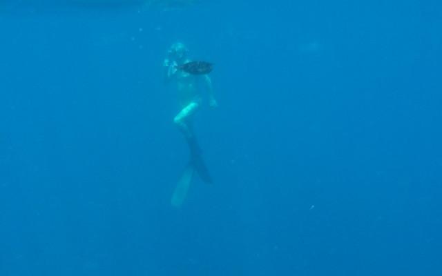 去马尔代夫的班多士岛来一次全家旅行吧~~