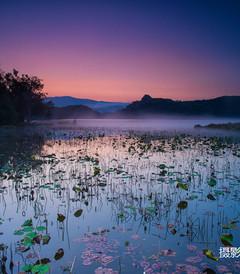 [普洱游记图片] 走少有人走的云南寻找星空下的家!普洱西盟勐海西双版纳滇西中缅边境行摄旅行