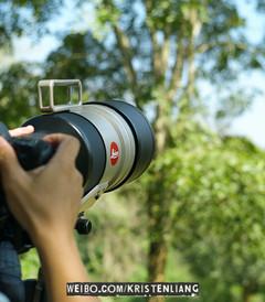 [曼谷游记图片] 泰國拍鳥全紀錄:曼谷、清邁、甲米