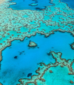 [墨尔本游记图片] 再次惊叹澳洲-大堡礁和大洋路-心醉太平洋