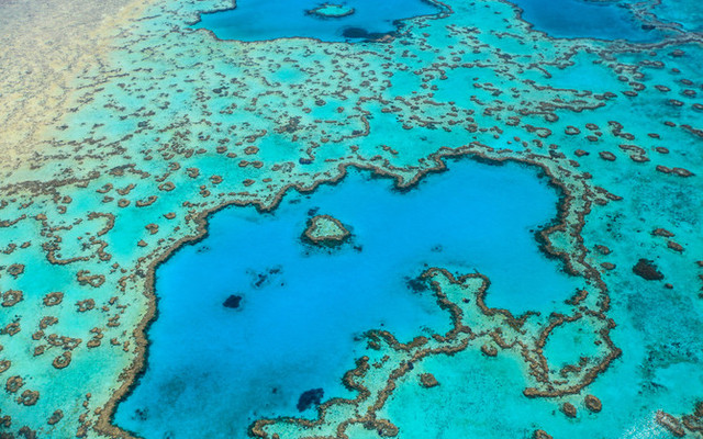 再次惊叹澳洲-大堡礁和大洋路-心醉太平洋
