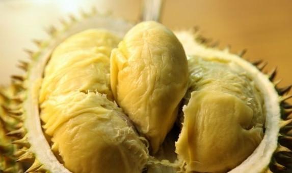 榴莲控的自白:盘点在槟城不可错过的极品榴莲(槟城榴莲节)