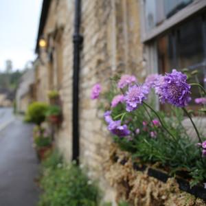 索尔兹伯里游记图文-最美小镇图片集--英格兰系列