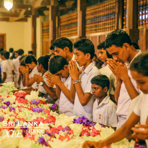 斯里兰卡游记图文-印度洋的茶叶宝石王国【斯里兰卡】