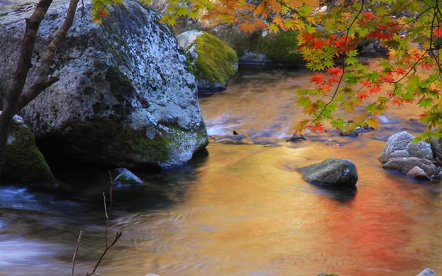 十月金秋,本溪观枫,不一样的赏枫地方