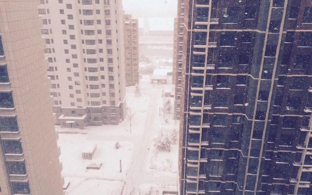 青岛风吹文登雪大