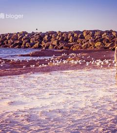 [阿德莱德游记图片] 【南澳大利亚 阿德莱德】犹如梦境的城市