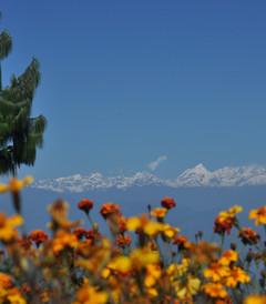 [博卡拉游记图片] 尼泊尔の欢乐之旅~(*^__^*) (加都-博卡拉-蓝比尼-奇特旺-纳加阔特)