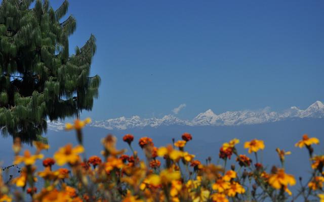 尼泊尔の欢乐之旅~(*^__^*) (加都-博卡拉-蓝比尼-奇特旺-纳加阔特)