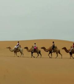 [达拉特旗游记图片] 老徐游记之最爱响沙湾