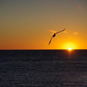 西澳大利亚游记图文-2014-06西澳自助-游见世界遗产