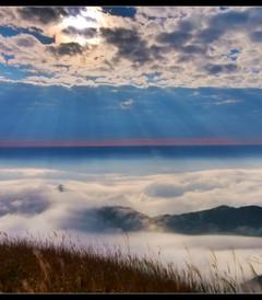 [萍乡游记图片] 在云端——醉美武功山