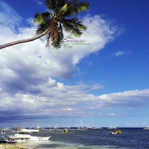 塔比拉兰游记图文-【美图】【菲律宾.邦劳】阳光沙滩海鲜餐 #阿罗娜海滩 #美食